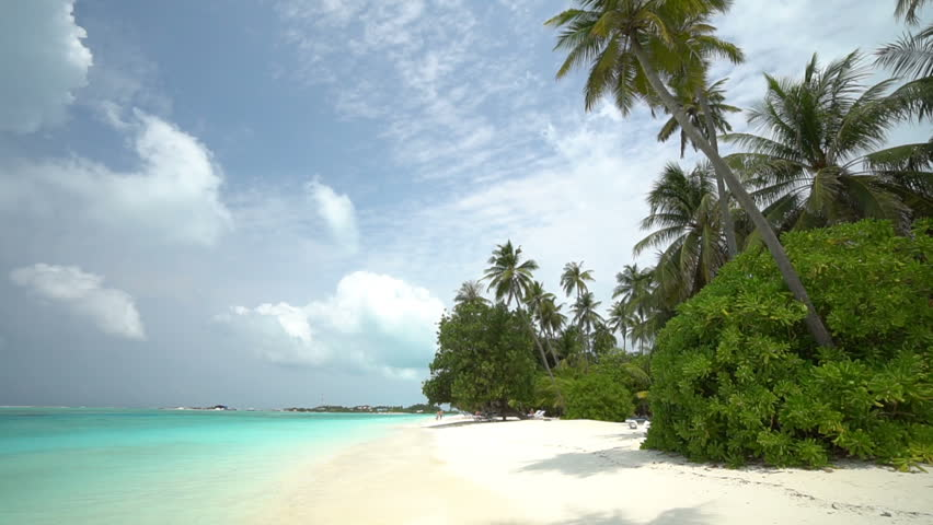 Stunning view of sandy beach on tropical island, palm trees and beautiful clear waters   Shutterstock HD Video #1028695292
