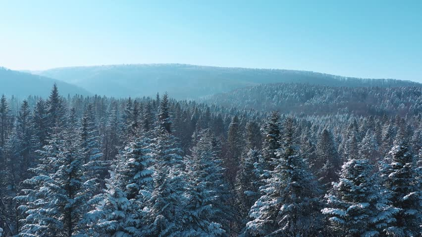 Breathtaking fly over frozen snowy fir and pine trees on distant mountains background. Nature concept. Winter time, coziness, enjoying the landscape. No people around, wild nature