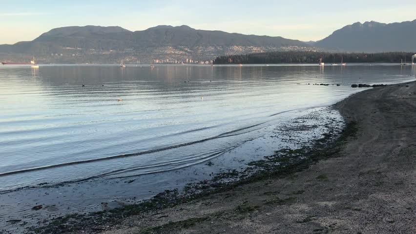 Shoreline in Vancouver . .