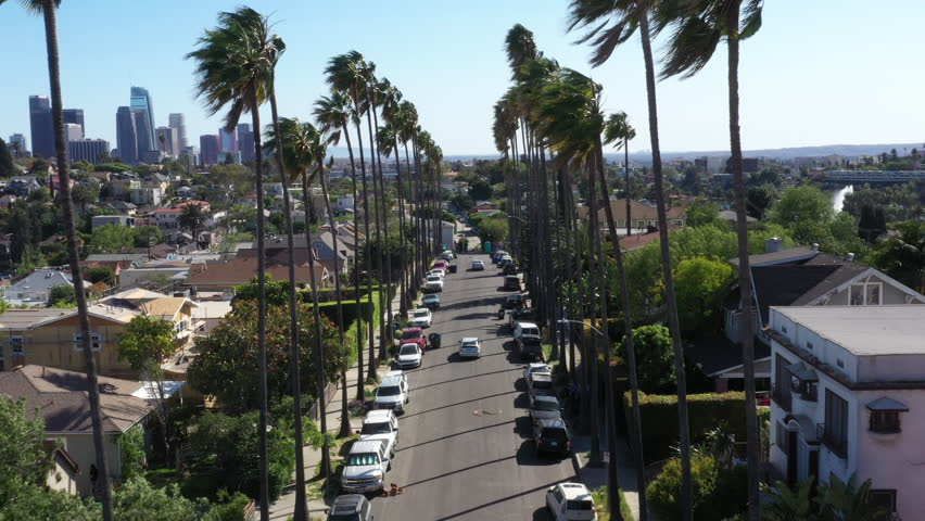 Drone flys over iconic Los Angeles palm tree lined street with the city skyline in the background.