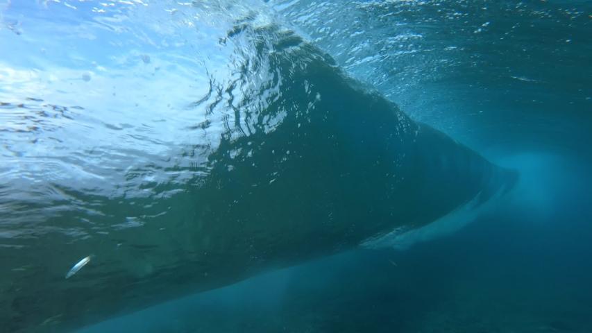 Ocean wave barreling in Maldives | Shutterstock HD Video #1029434804