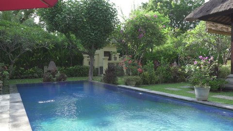 The camera moves on a tropical garden with the pool lengthways the blossoming trees. Bali. Indonesia.