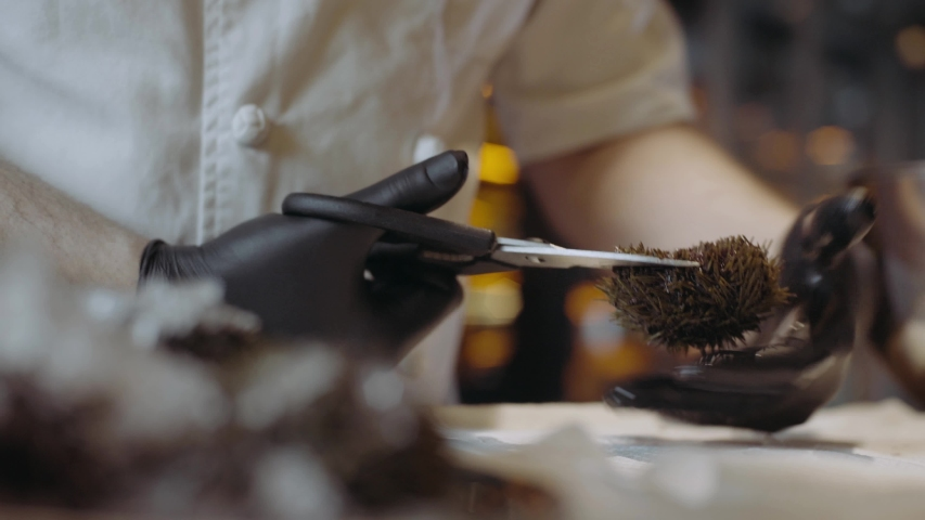 The process of dressing and cooking sea urchin | Shutterstock HD Video #1029926333