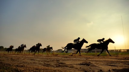 Video slow motion of horse racing at the racetrack, Group of jockey compete in horse races in slow motion, Horse riding competition in slow motion