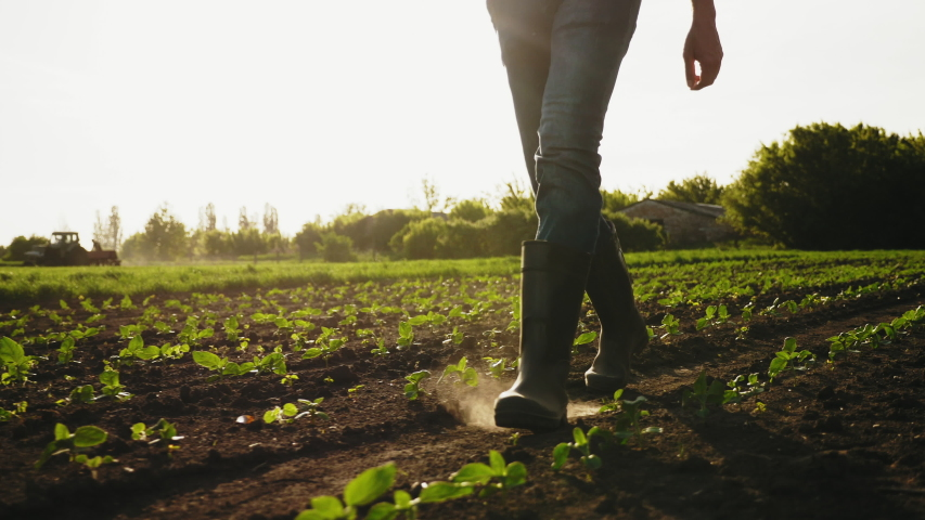A farmer walks across a field in rubber boots on a blurred background of the tractor in motion. Concept of: Rubber boots, Lifestyle, Farmer, Slow Motion, Fields.