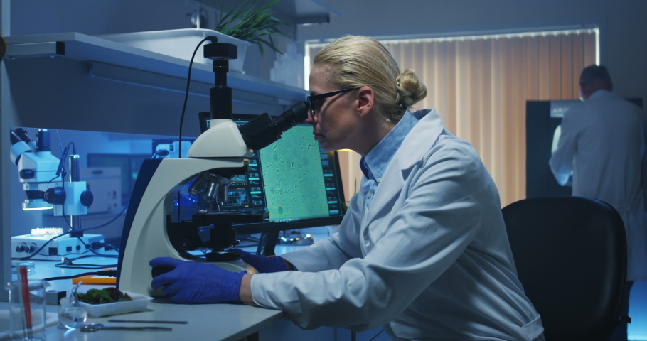 Medium shot of a female biologist looking at camera while sitting at her desk in a lab   Shutterstock HD Video #1030179227