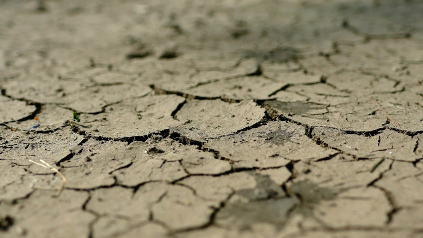 Water drops of rain fall on the cracked crust of soil from drought. The long-awaited rain. Dried crust. Desert without water. Barren field in hot weather.