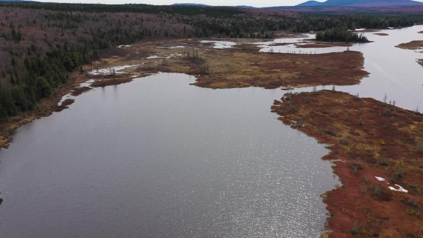 Flying high over a flooded spring bog in Maine dotted with dead trees AERIAL   Shutterstock HD Video #1030289006