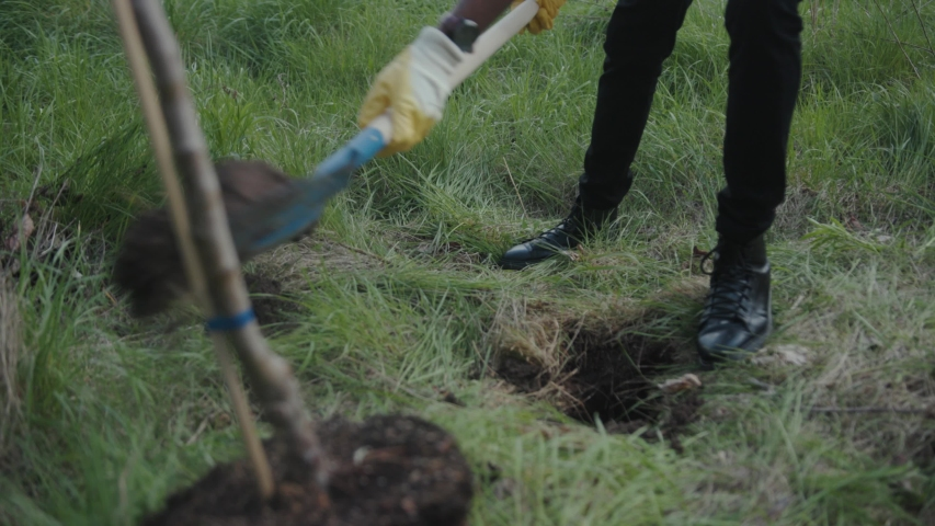 Close up hands african american man with shovel plant tree garden forest volunteering charity ecology seedling agriculture care environment spring leisure natural summer organic plantation slow motion #1030335284
