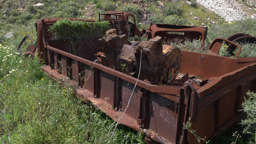 Three abandoned, old and rusty trucks with flowers and plants growing out of them,