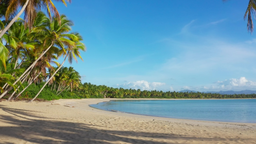 Dominican Republic beaches. Blue lagoon and palm grove on Amazing Caribbean beach. Summer holidays in paradise. Punta Cana vacation. Sea, palm trees, beach and sky. The best beaches in the world | Shutterstock HD Video #1030397837