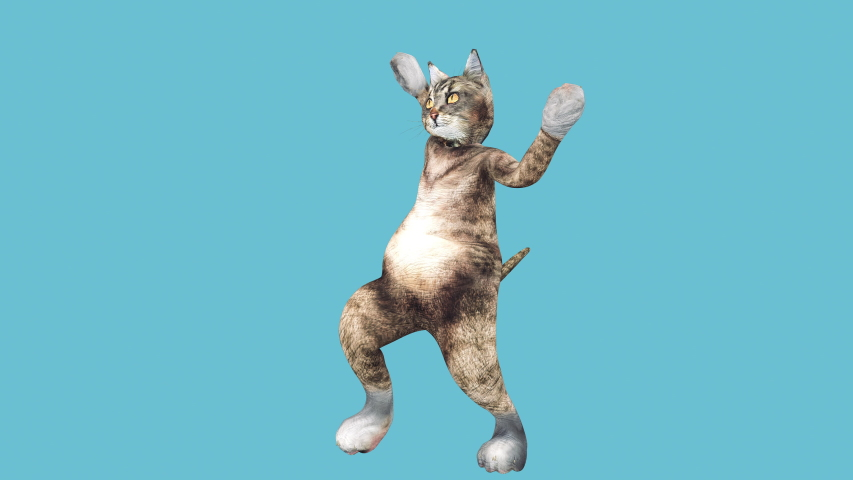 A cute brown pussycat dancing alone in a modern style in empty colour space. cat waving paws and tail in an energetic summer mood. Cool and the best moves in the stylish of the 80s and 90s Royalty-Free Stock Footage #1030411091