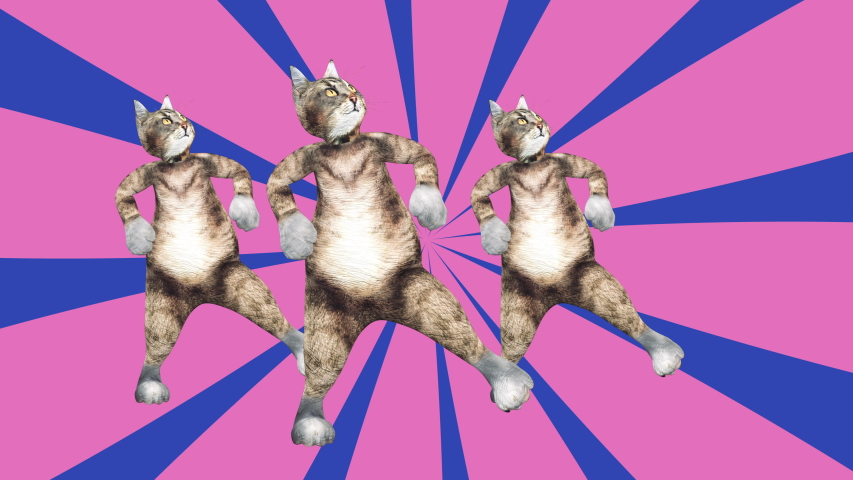 Comic tomcats waving paws and tail in an energetic clip summer mood. A cute brown pussycats dancing together in a modern style in tunnel colour space. Cool and the best moves in stylish of 80s and 90s #1030411100