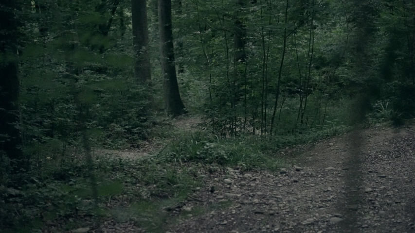 Mountainbiker rides down a turn section of the trail. 4K.