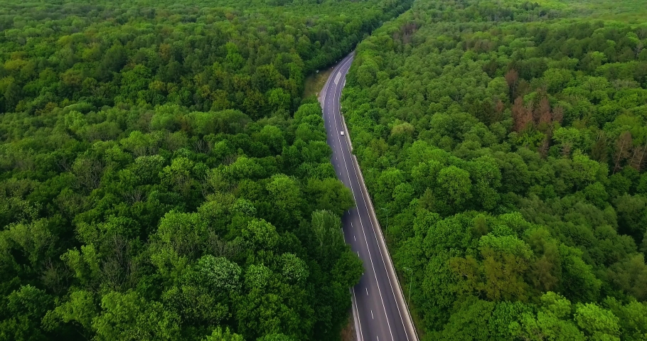 Aerial view flying over road with car moving, that through lane green forest. Car driving along the forest road. AERIAL: Car driving through pine forest. Drone shot from above