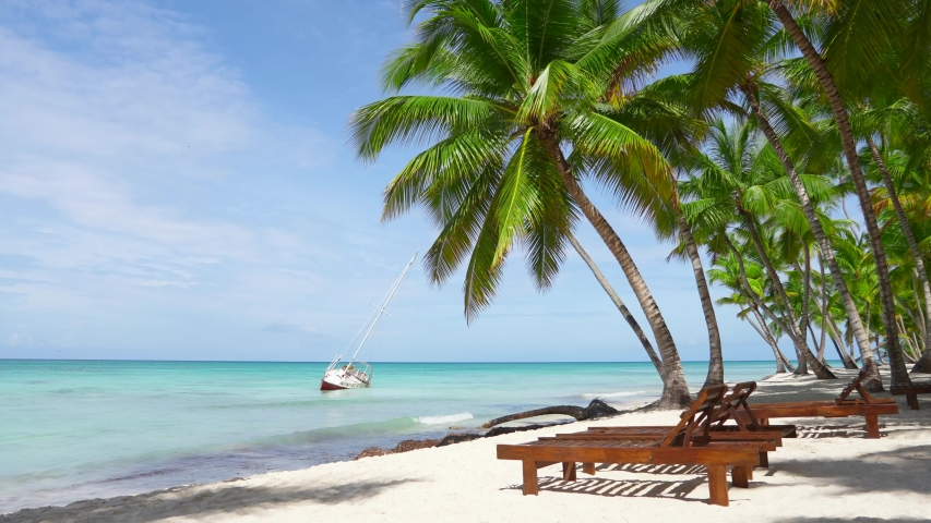 Walk on the amazing beach of the island of Saona, Dominican Republic. Beach loungers, palm trees, white sand, blue Caribbean Sea and a sunken yacht. Punta Cana vacation summer resort. White sand isle. | Shutterstock HD Video #1030563335
