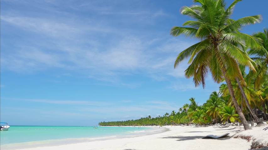 The amazing wild beach of the island of Saona in the Atlantic Ocean. Azure Caribbean Sea and palm trees. Palm shadow on the white sand. Fishing boat on the waves of the Caribbean. Palms island beach. | Shutterstock HD Video #1030563383