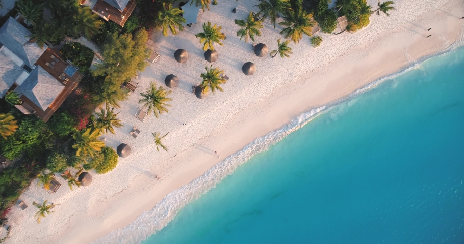 Aerial view of sea waves, umbrellas, green palms on the sandy beach at sunset. Summer in Zanzibar, Africa. Tropical landscape with palm trees, people, parasols, sand, blue water. Top view from air #1030586501