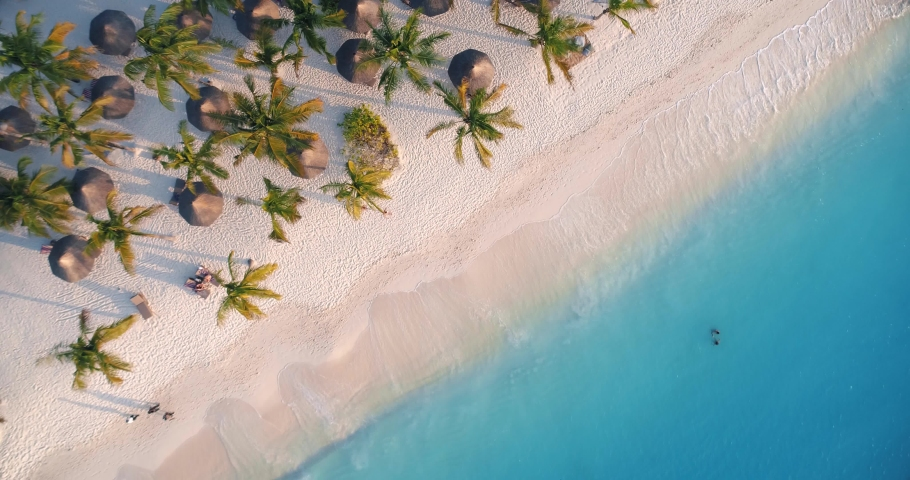 Aerial view of sea waves, umbrellas, green palms on the sandy beach at sunset. Summer in Zanzibar, Africa. Tropical landscape with palm trees, people, parasols, sand, blue water. Top view from air #1030586510
