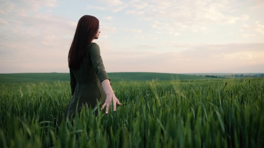 A young girl happily walking in slow motion through a field touching with hand wheat ears. Beautiful carefree woman enjoying nature and sunlight in wheat field at incredible colorful sunset | Shutterstock HD Video #1030587431