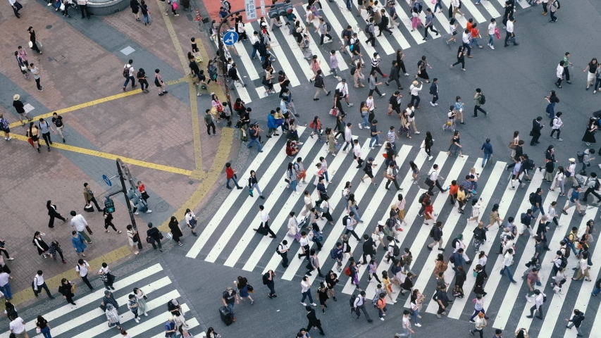 Aerial view of pedestrians walk at Shibuya Crossing. The scramble crosswalk is one of the largest in the world. Shibuya, Tokyo, Japan. | Shutterstock HD Video #1030603697