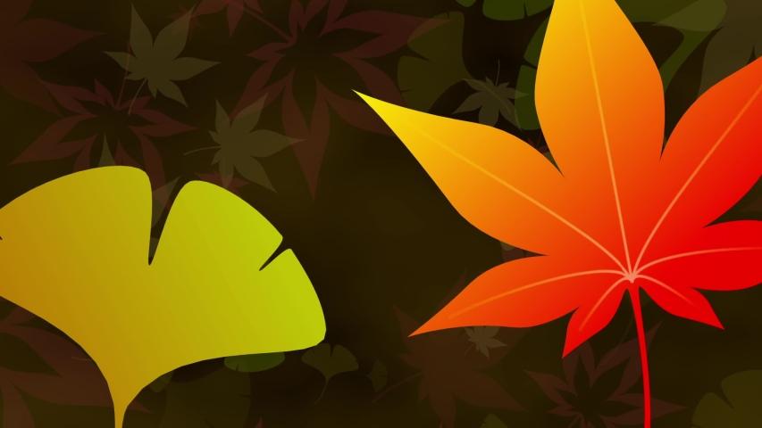 Maple Ginkgo leaves loop dark background #1030775195