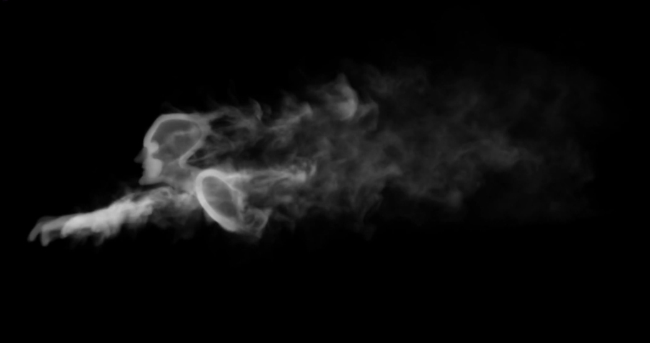 Men Ghost of Smoke White And Gray | Shutterstock HD Video #1030822109