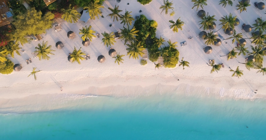 Aerial view of sea waves, umbrellas, green palms on the sandy beach at sunset. Summer in Zanzibar, Africa. Tropical landscape with palm trees, people, parasols, sand, blue water. Top view from air | Shutterstock HD Video #1030914146