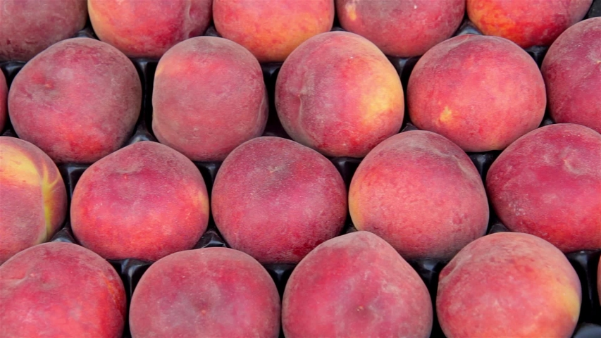 Fresh peaches harvest close up  V | Shutterstock HD Video #1030924829
