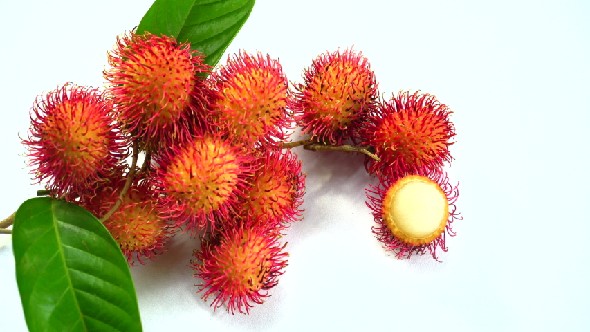 Rambutan isolated on white background. Dolly shot for advertising. The tropical fruits ideas concept. | Shutterstock HD Video #1031049266