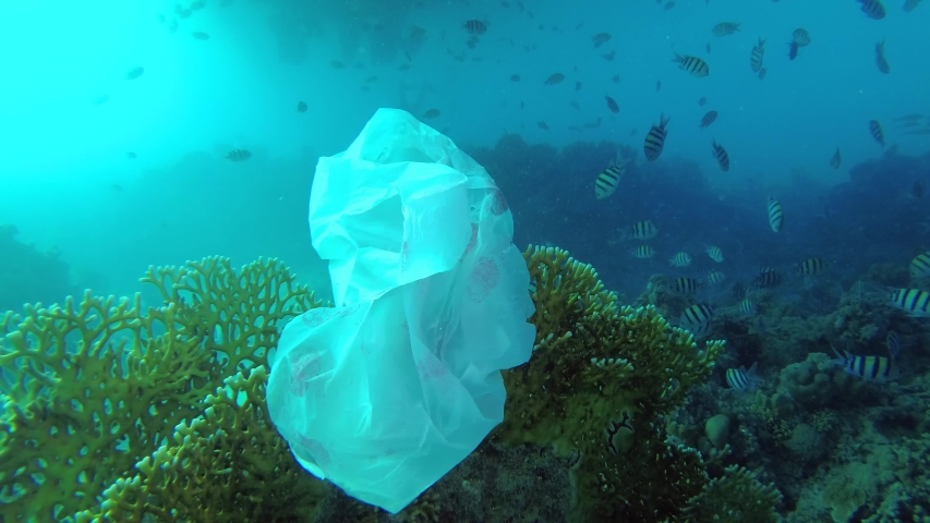 Plastic pollution - a discarded wtite plastic bag on tropical coral reef, on the blue water background swims school of tropical fish. Underwater shots | Shutterstock HD Video #1031050481