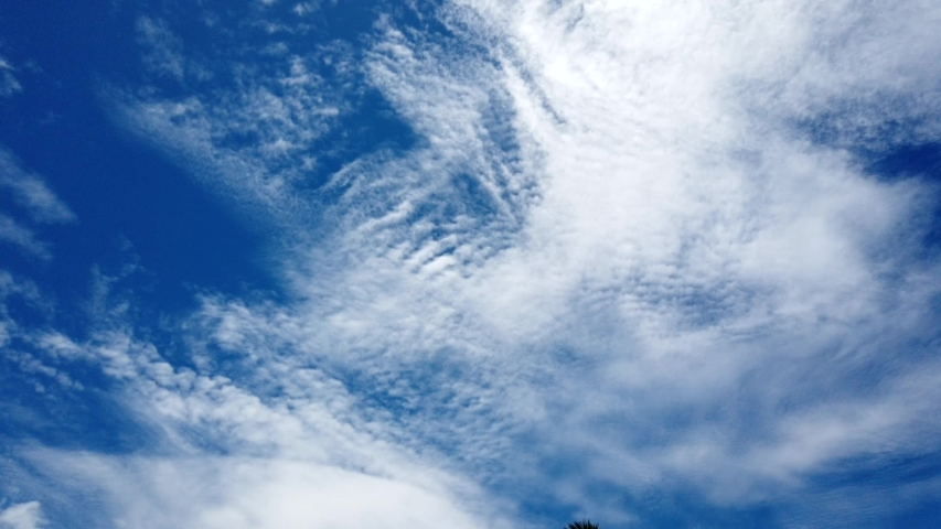 Cloudy time lapse,Beautiful white cloudscape soar across the screen in time lapse fashion over a deep blue background | Shutterstock HD Video #1031102288
