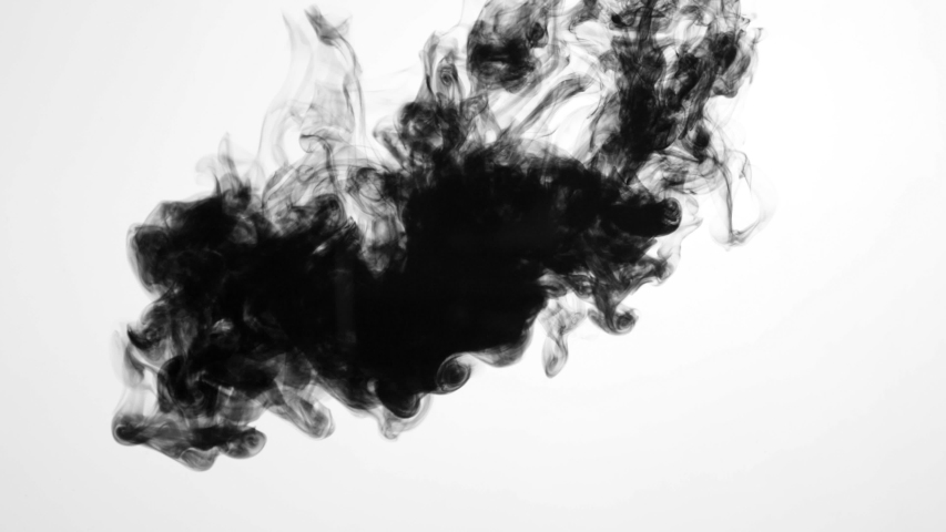 Ink Run, Blot, Sumi Ink in water, Beautiful black watercolor ink drops transition on white background - ink effect, transparent, transition, chamber, Mirror, isolated, with circle organic flow expand | Shutterstock HD Video #1031172899