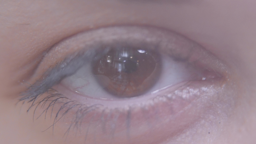 Close-up of female eye. Macro detailed shooting. Woman blinking slowly, looking in camera.   Shutterstock HD Video #1031176361