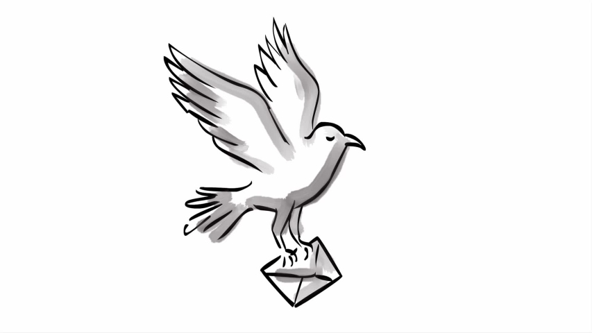 2d Animation motion graphics watercolor of a carrier pigeon bird carrying letter  envelope or delivering mail on white screen in HD high definition.
