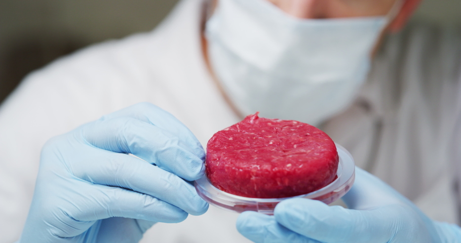 Slow motion of an young scientist is inspecting and analyzing the cultured artificial meat sample in laboratory. Royalty-Free Stock Footage #1031443409