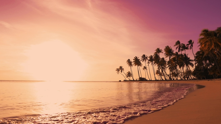The sun over sea. Amazing red sunrise on beach palms island. Orange colors sunrise and waves. Nature sun sunrise palms beach background. Yellow sky, beautiful palm trees on the beach isle. Sunshine | Shutterstock HD Video #1031459495