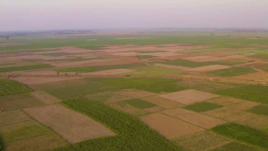 India picturesque beautiful agricultural fields at sunset, 4k aerial drone footage