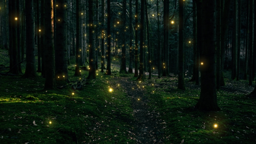 Beautiful gold colored shiny fireflies flying in dark foggy forest landscape.