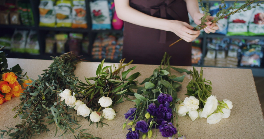 Slow motion of female florist young woman in apron holding beautiful flowers making bouquet working in shop. Small business, profession and plants concept.