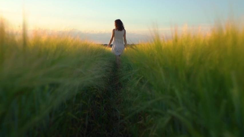 Beautiful woman in white dress walking in green wheat field, slow motion   Shutterstock HD Video #1031798984