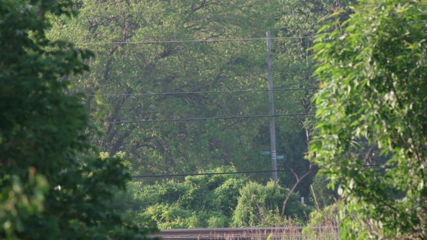 TOLEDO, OHIO - June 5, 2015: Amtrak Passenger Train seen between two trees as it heads to Chicago
