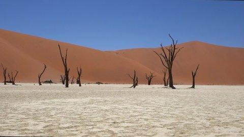 Sesriem, Namibia - 12 20 2017: Sesriem, December 20, 2018: Man walks alone in Deadvlei, namibia. Sossusvlei. Namibia