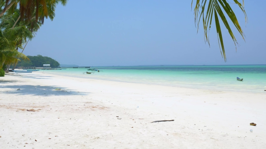 White sand beach caribbean sea turquoise water sunny tropical coastline palm fronds idyllic nobody, Pasir Panjang Kei Islands Indonesia Moluccas Maluku Indonesia   Shutterstock HD Video #1031971856