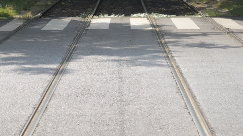 Zebra crossing between tram rails | Shutterstock HD Video #1032052718
