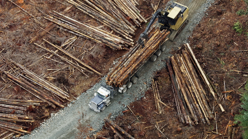 Canada - February 2019: Aerial view of deforestation for Industrial production, mechanical gripper loading lumber on to truck for transportation Vancouver Island RED WEAPON