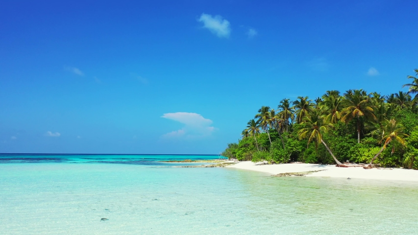 Maldives tropical island and blue sea with drone aerial flying view on a beach with white sand and beautiful sky background   Shutterstock HD Video #1032198071