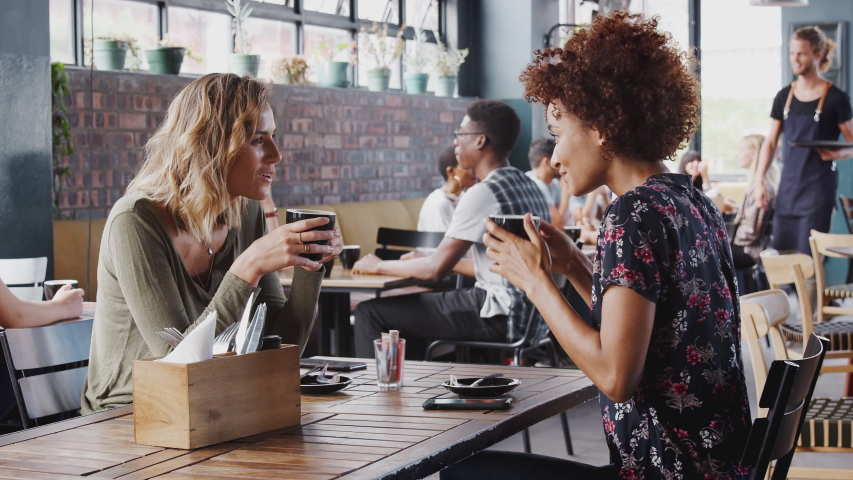 Two Female Friends Meeting Sit At Table In Coffee Shop And Talking | Shutterstock HD Video #1032211991