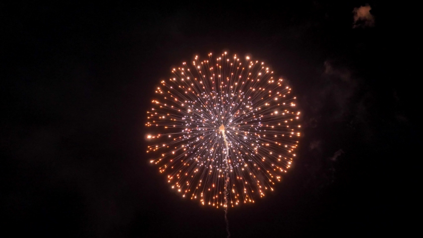 The fireworks in the night sky | Shutterstock HD Video #1032318407