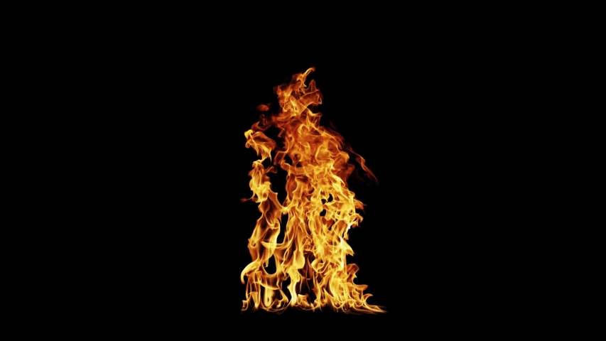 Fire Flames Igniting And Burning - Slow Motion. A line of real flames ignite on a black background. Real fire. Transparent background. PNG + Alpha.